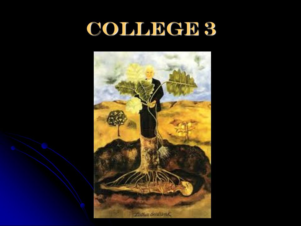 College 3