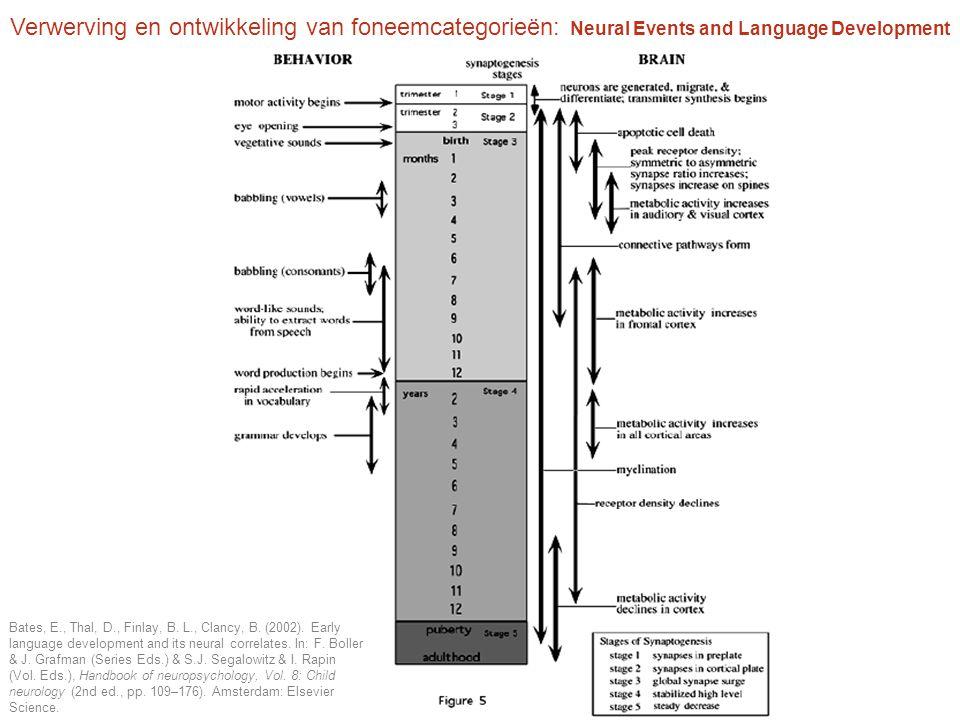 Verwerving en ontwikkeling van foneemcategorieën: Neural Events and Language Development
