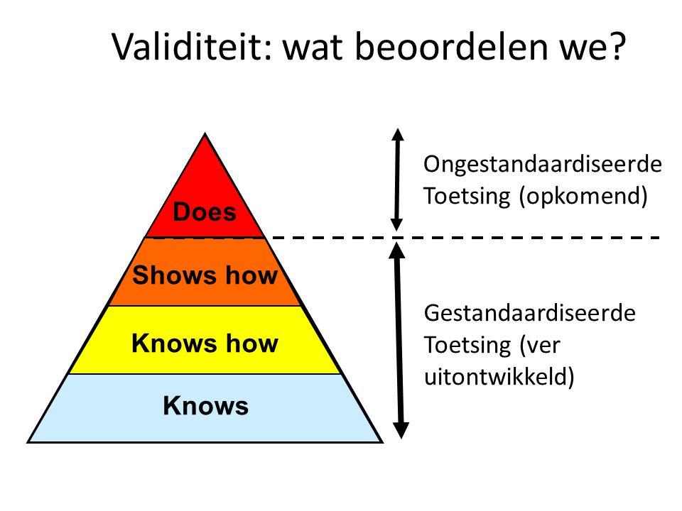 Validiteit: wat beoordelen we