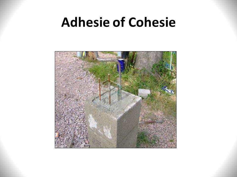 Adhesie of Cohesie