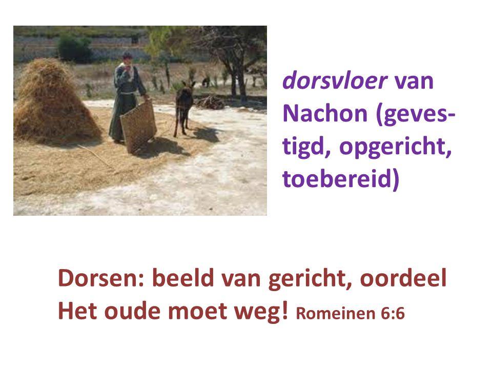 dorsvloer van Nachon (geves- tigd, opgericht, toebereid) Dorsen: beeld van gericht, oordeel.