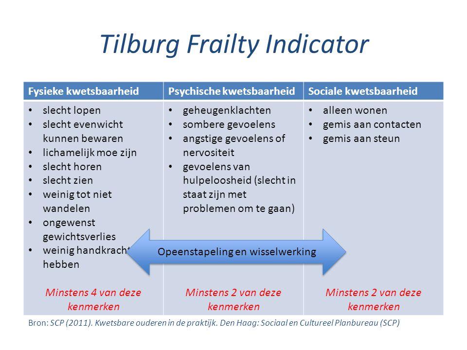 Tilburg Frailty Indicator
