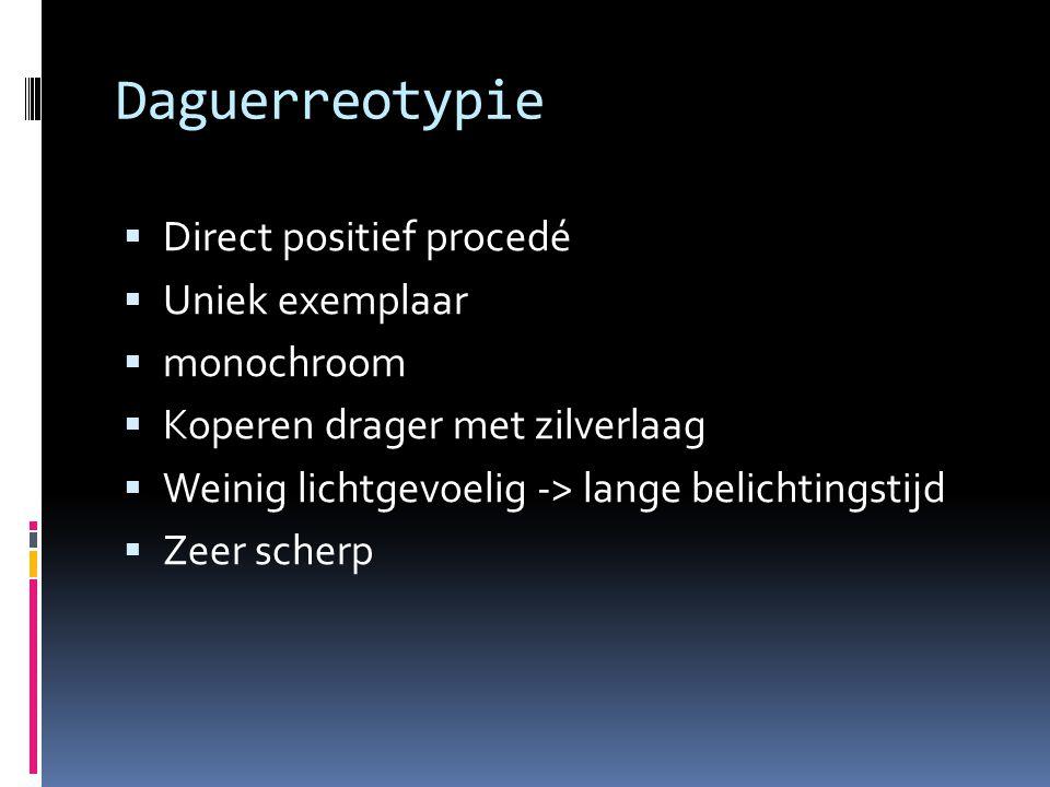 Daguerreotypie Direct positief procedé Uniek exemplaar monochroom