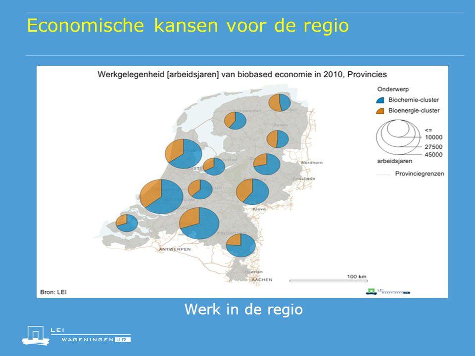Economische kansen voor de regio