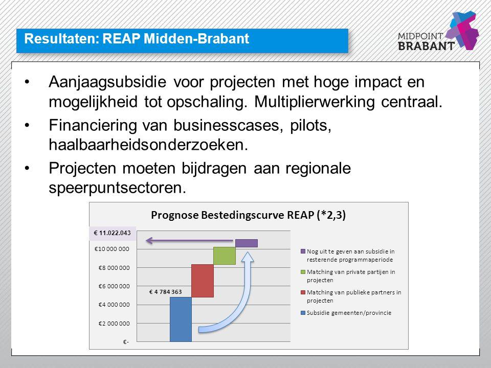 Resultaten: REAP Midden-Brabant