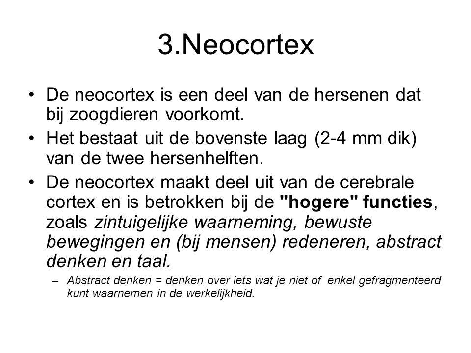 3.Neocortex De neocortex is een deel van de hersenen dat bij zoogdieren voorkomt.