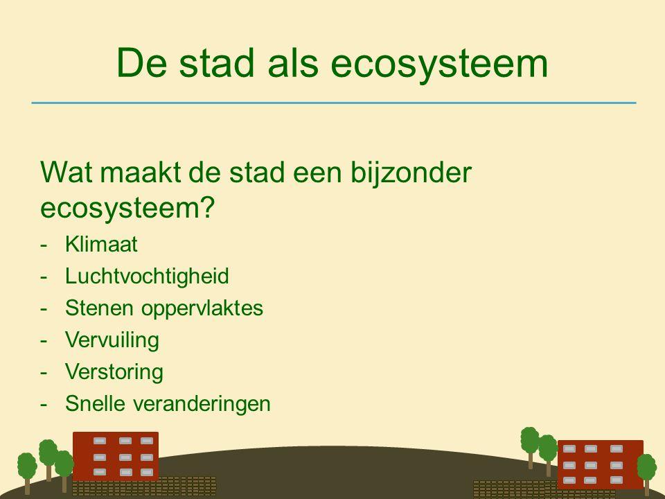 De stad als ecosysteem Wat maakt de stad een bijzonder ecosysteem