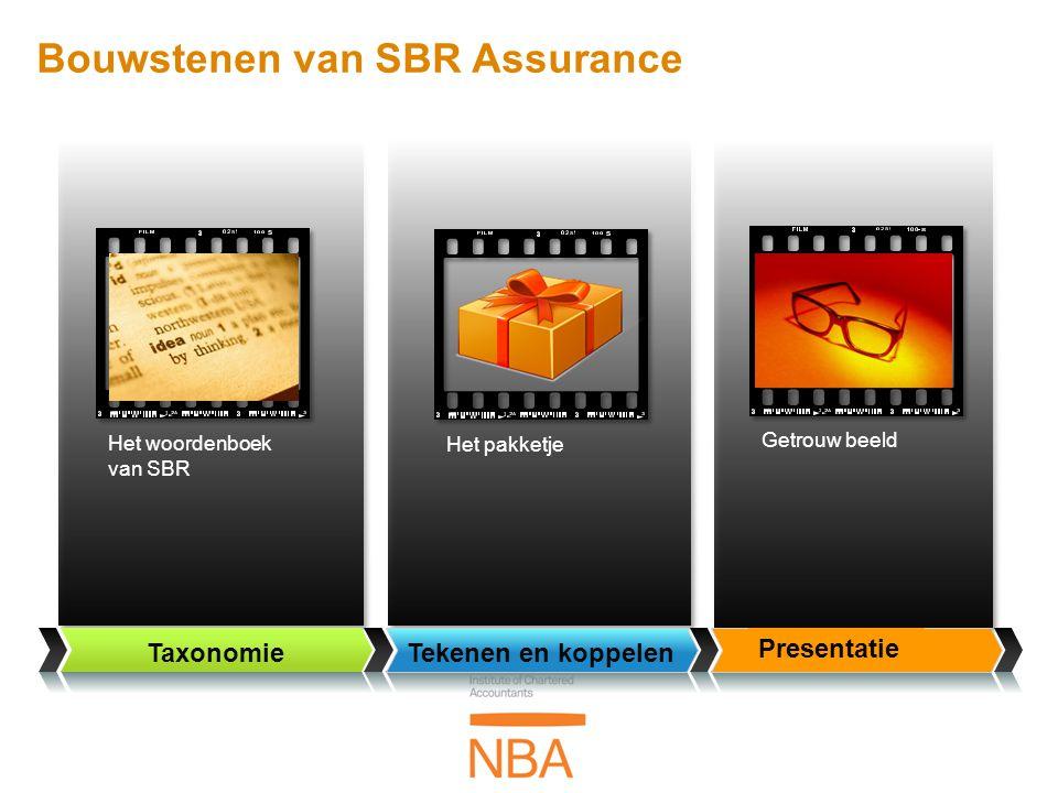 Bouwstenen van SBR Assurance