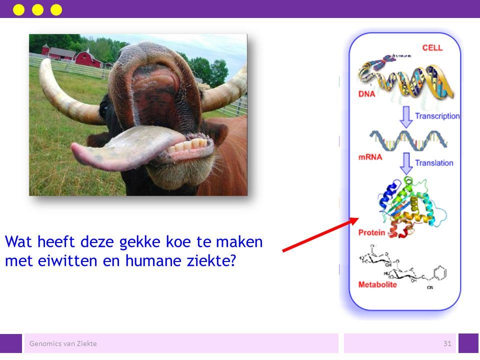 Wat heeft deze gekke koe te maken met eiwitten en humane ziekte