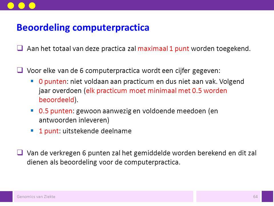 Beoordeling computerpractica