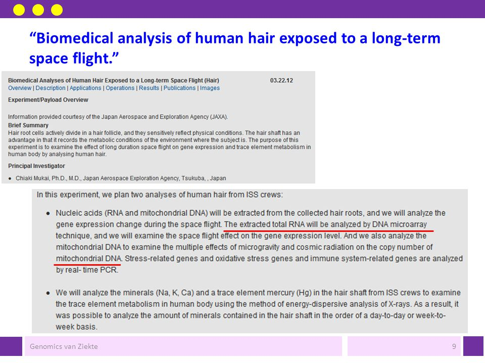 Biomedical analysis of human hair exposed to a long-term space flight