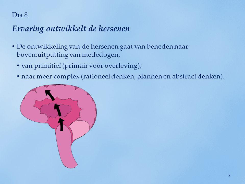 Ervaring ontwikkelt de hersenen