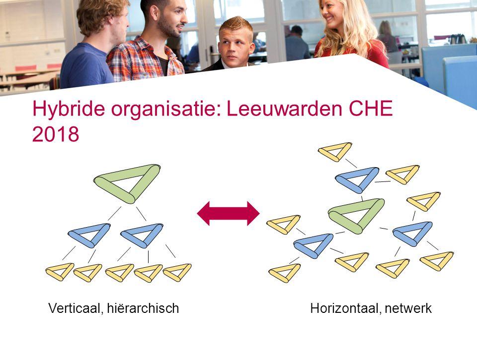 Hybride organisatie: Leeuwarden CHE 2018