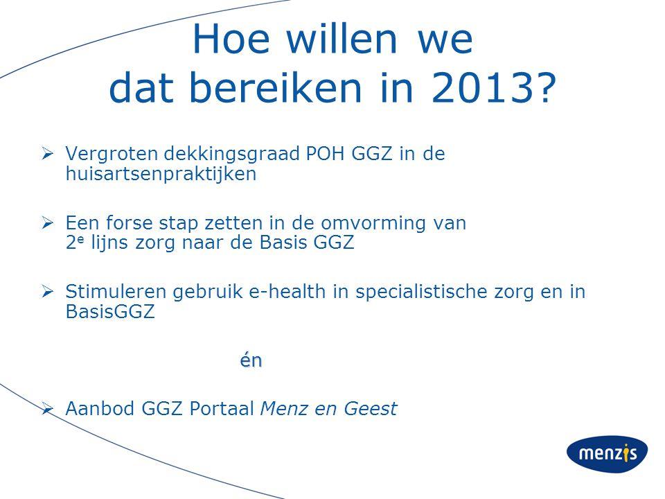 Hoe willen we dat bereiken in 2013