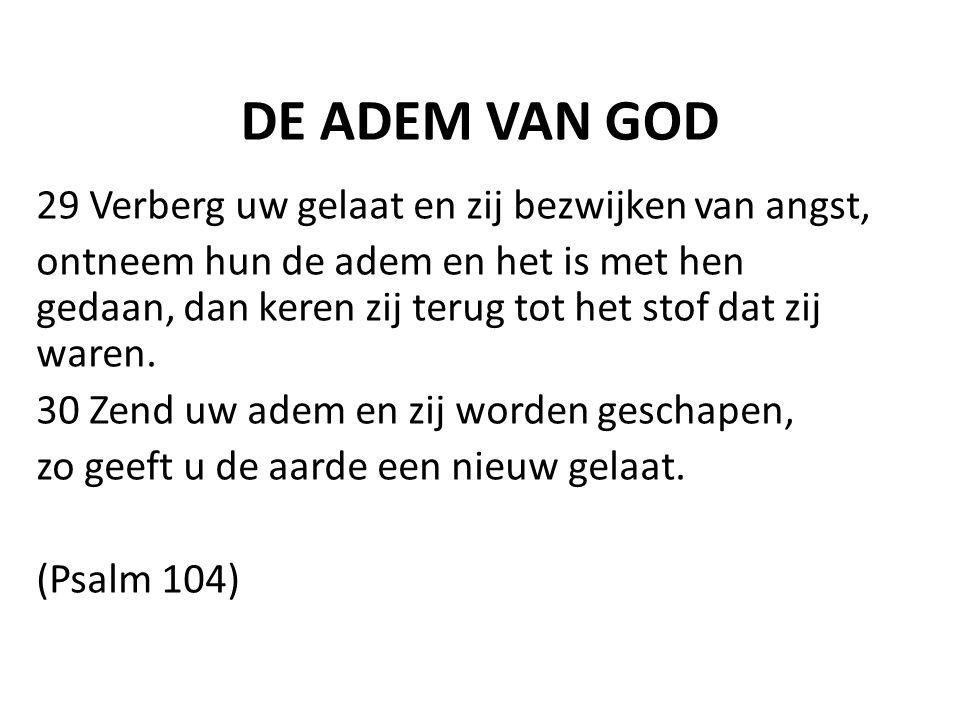 DE ADEM VAN GOD 29 Verberg uw gelaat en zij bezwijken van angst,