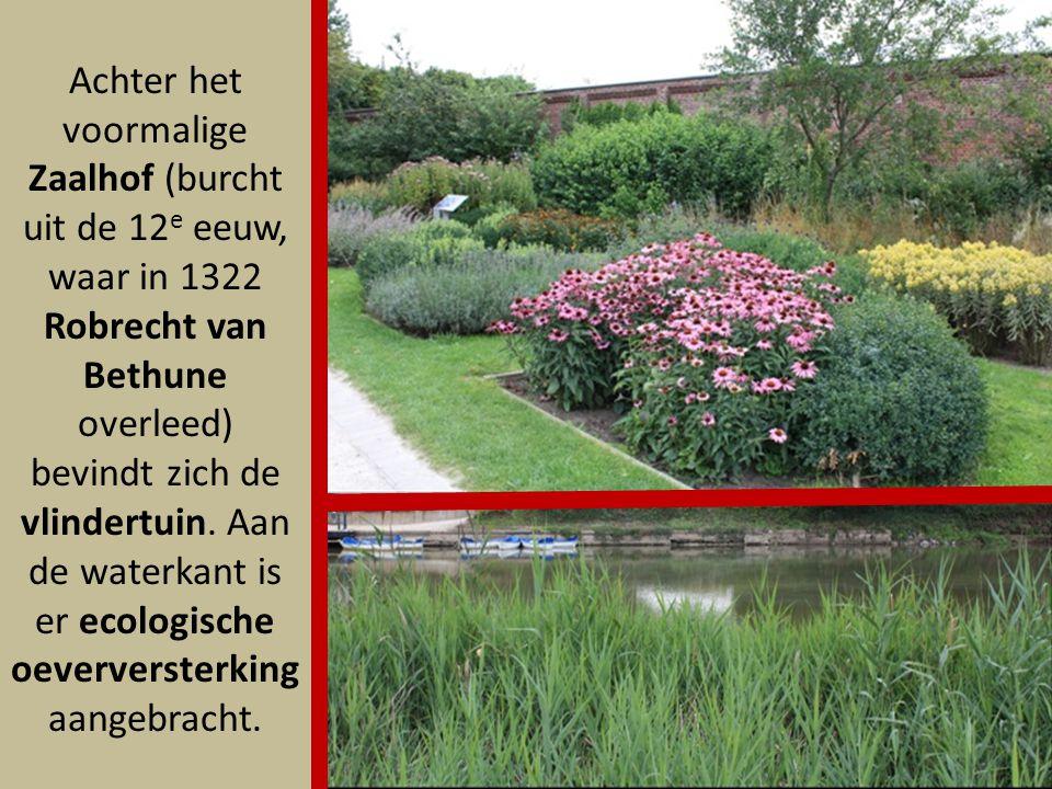 Achter het voormalige Zaalhof (burcht uit de 12e eeuw, waar in 1322 Robrecht van Bethune overleed) bevindt zich de vlindertuin.