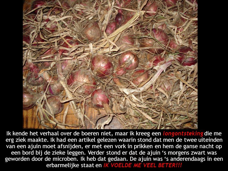 Ik kende het verhaal over de boeren niet, maar ik kreeg een longontsteking die me erg ziek maakte.