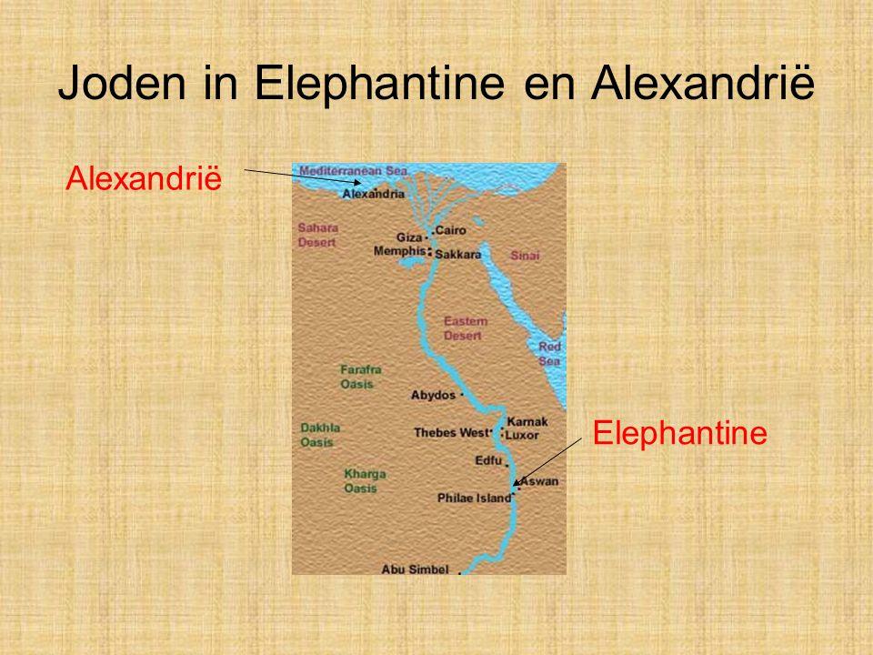 Joden in Elephantine en Alexandrië