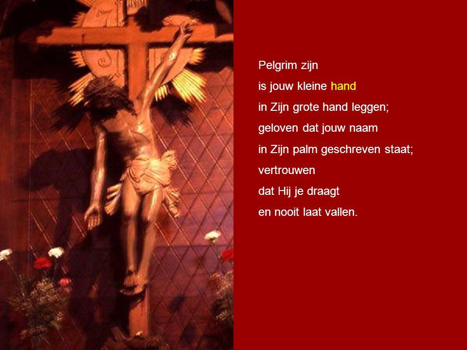 Pelgrim zijn is jouw kleine hand. in Zijn grote hand leggen; geloven dat jouw naam. in Zijn palm geschreven staat;