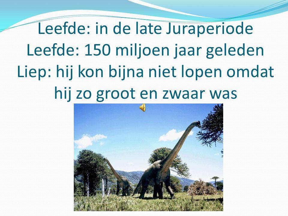 Leefde: in de late Juraperiode Leefde: 150 miljoen jaar geleden Liep: hij kon bijna niet lopen omdat hij zo groot en zwaar was