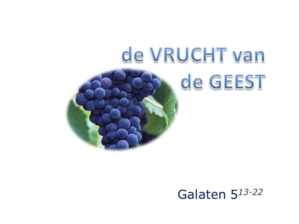 de VRUCHT van de GEEST Galaten 513-22