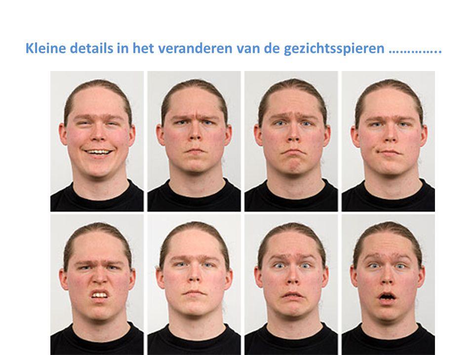 Kleine details in het veranderen van de gezichtsspieren …………..