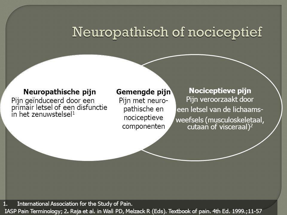 Neuropathische pijn Gemengde pijn Nociceptieve pijn