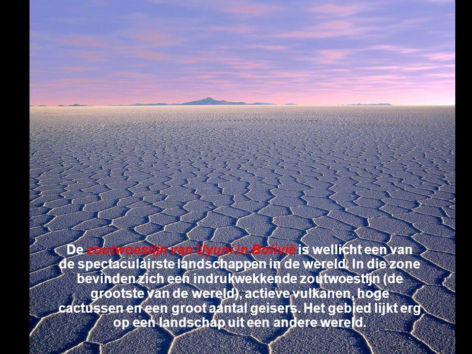 De zoutwoestijn van Uyuni in Bolivië is wellicht een van de spectaculairste landschappen in de wereld.