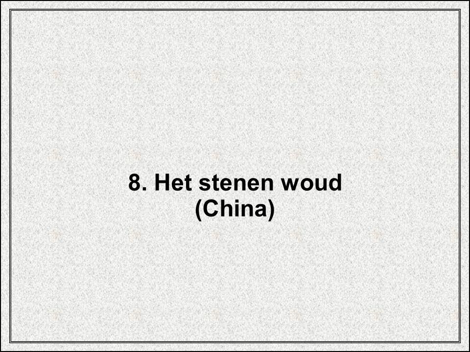 8. Het stenen woud (China)