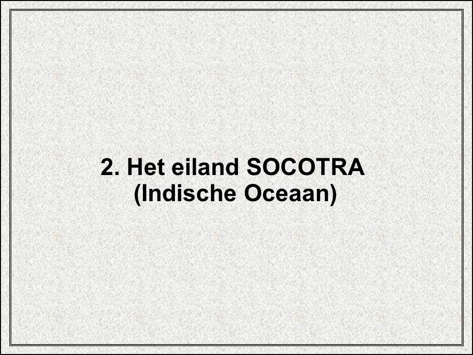 2. Het eiland SOCOTRA (Indische Oceaan)