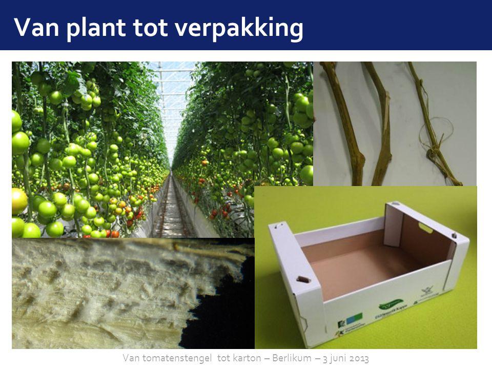 Van plant tot verpakking