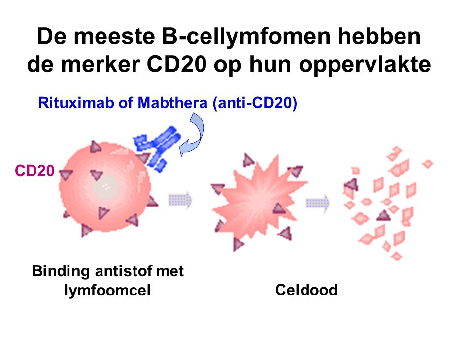 De meeste B-cellymfomen hebben de merker CD20 op hun oppervlakte