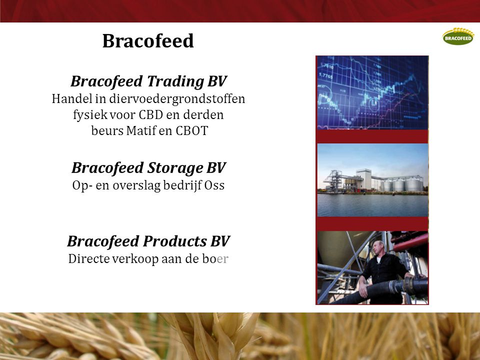 Bracofeed Bracofeed Trading BV Bracofeed Storage BV