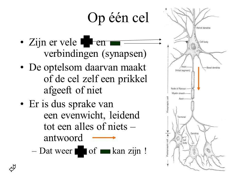 Op één cel Zijn er vele en verbindingen (synapsen)