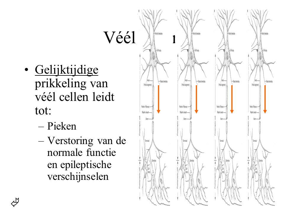 Véél cellen Gelijktijdige prikkeling van véél cellen leidt tot: Pieken