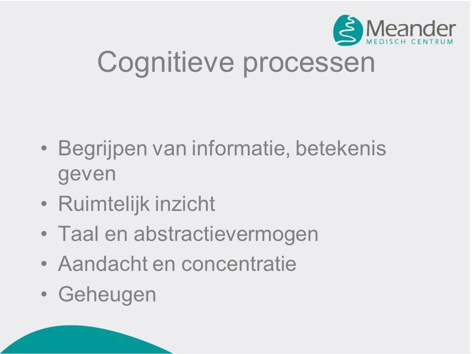 Cognitieve processen Begrijpen van informatie, betekenis geven