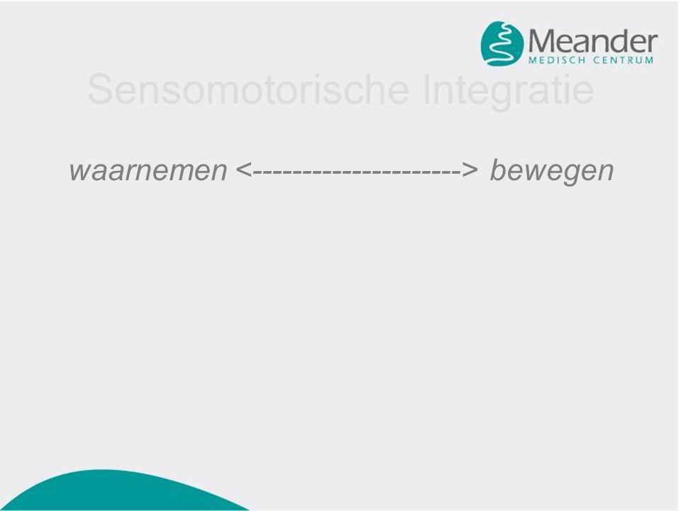 Sensomotorische Integratie