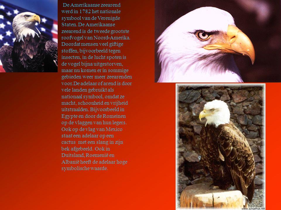 De Amerikaanse zeearend werd in 1782 het nationale symbool van de Verenigde Staten.