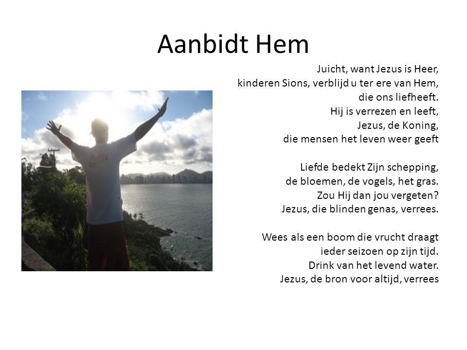 Aanbidt Hem Juicht, want Jezus is Heer, kinderen Sions, verblijd u ter ere van Hem,