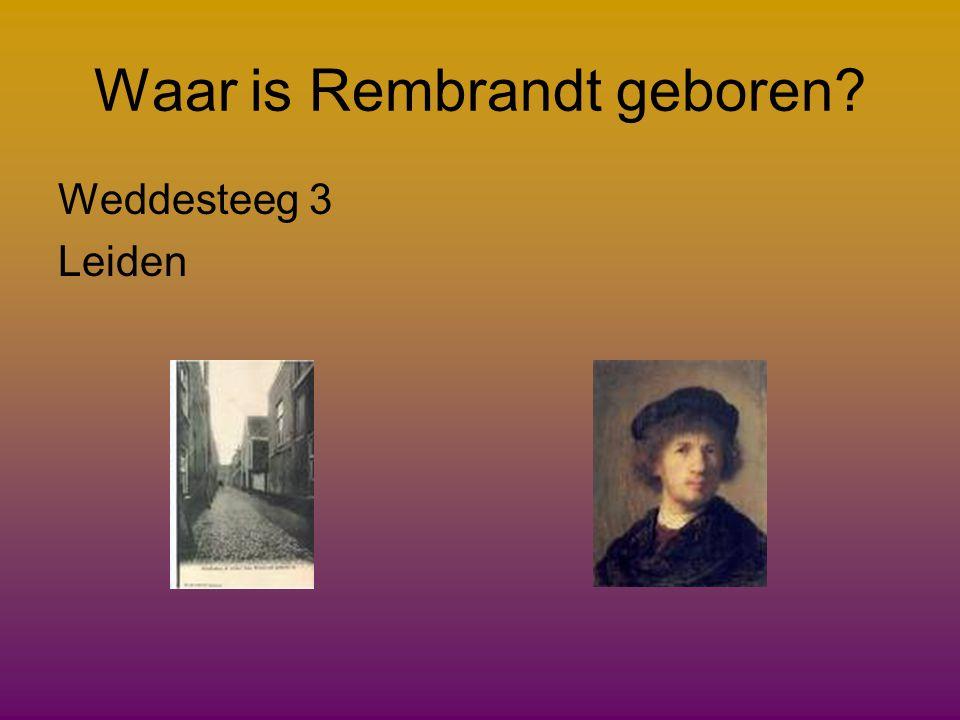 Waar is Rembrandt geboren