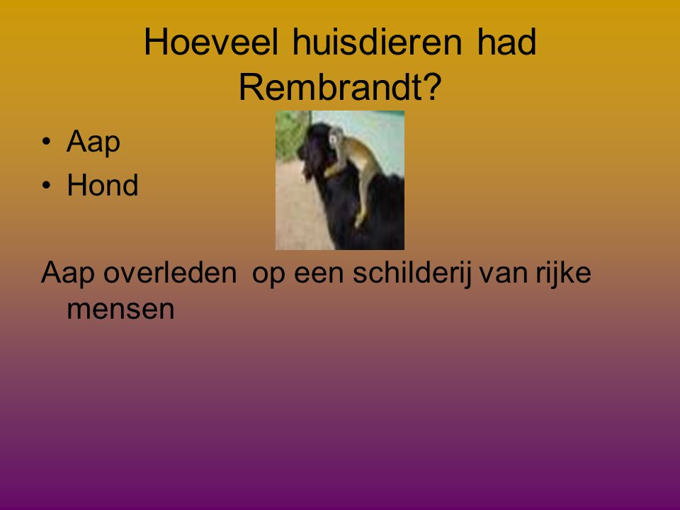 Hoeveel huisdieren had Rembrandt
