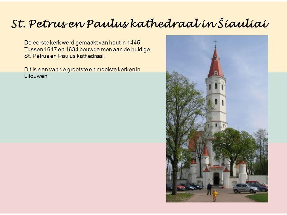 St. Petrus en Paulus kathedraal in Šiauliai