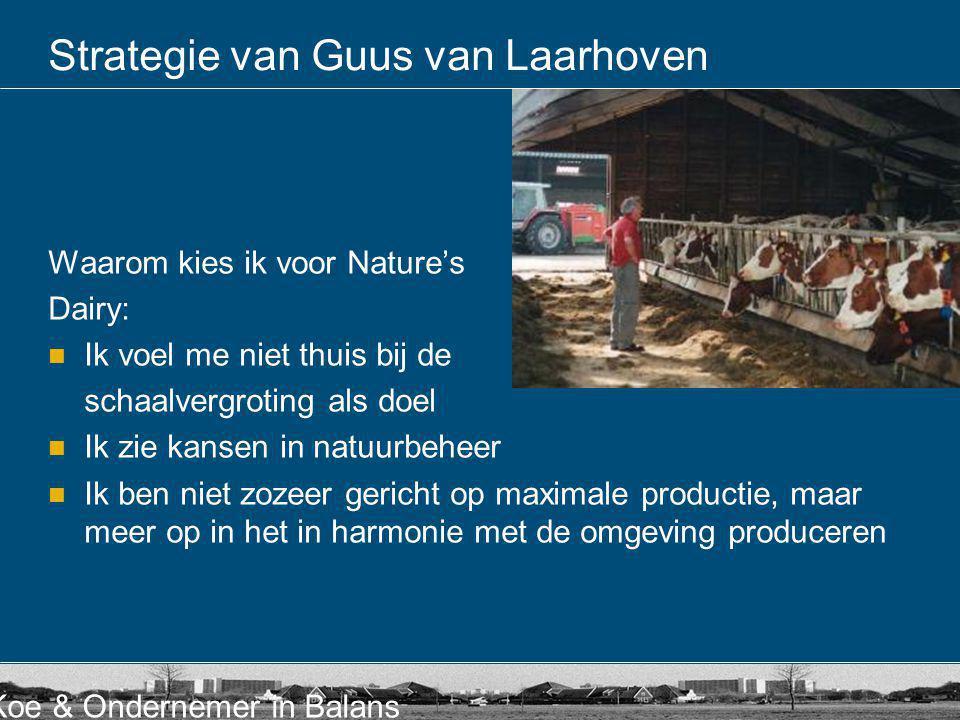 Strategie van Guus van Laarhoven