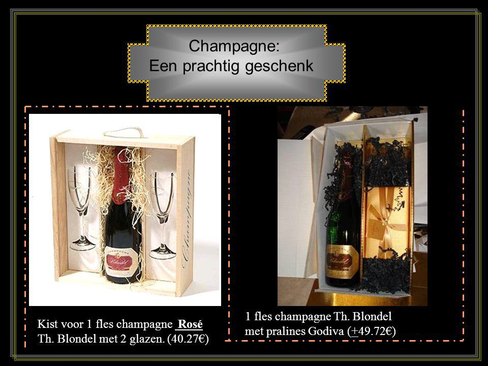 Champagne: Een prachtig geschenk 1 fles champagne Th. Blondel