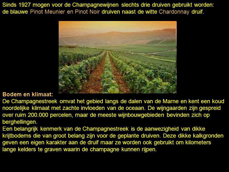 Sinds 1927 mogen voor de Champagnewijnen slechts drie druiven gebruikt worden: