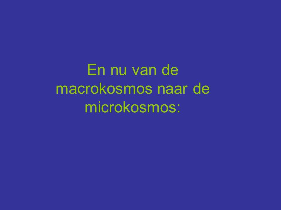 En nu van de macrokosmos naar de microkosmos: