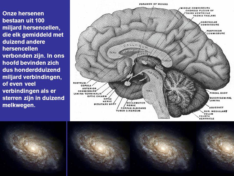 Onze hersenen bestaan uit 100 miljard hersencellen, die elk gemiddeld met duizend andere hersencellen verbonden zijn.
