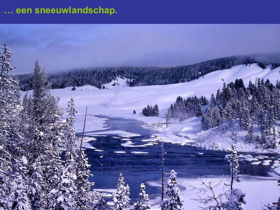 … een sneeuwlandschap.