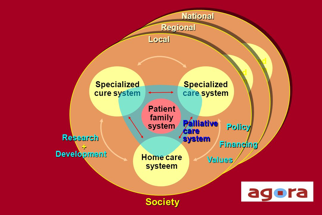Society National Regional Local Specialized care system