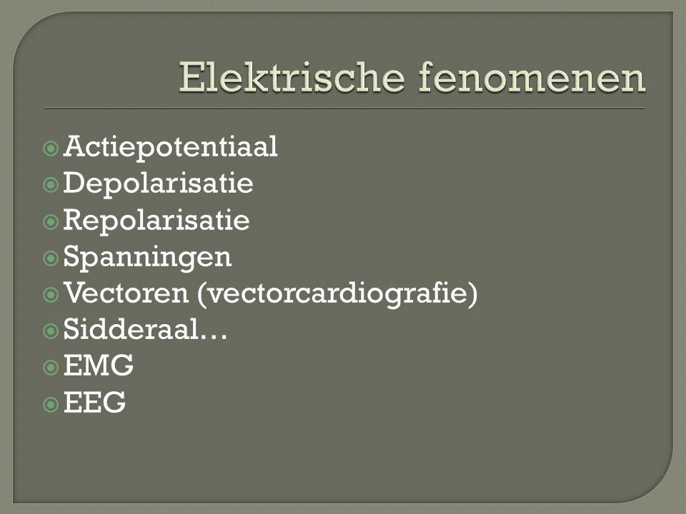 Elektrische fenomenen